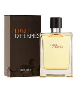 Nước hoa nam Terre D'Hermes 100ml